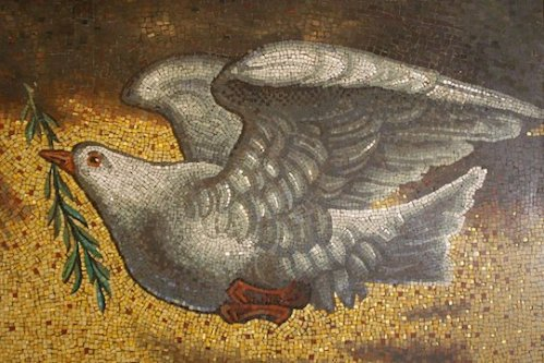 Dove-of-Peace-Don-Sutherland-Flickr-CC-BY-NC-SA-2.0